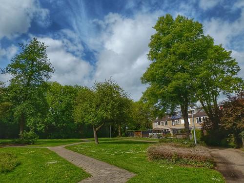 Green suburb