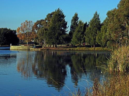8218 Yerrabi Pond