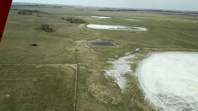 20190513_dry salt flat wetlands near Etters Beach Sask
