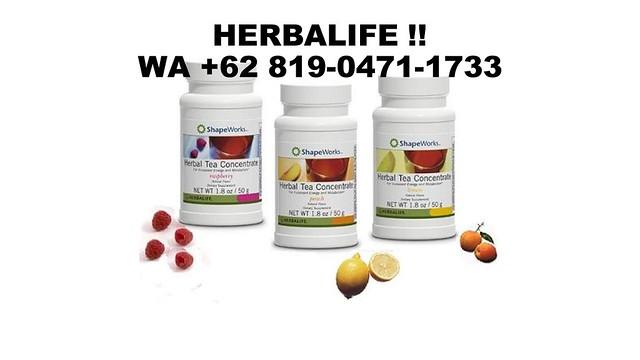 SALE VIRAL, WA +62 819-0471-1733, Kantor Herbalife Papua