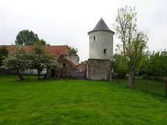 Esquerdes - Vestiges du château du Maréchal Philippe de Crévecoeur des Querdes (en2019) (1)