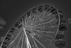 The Ride_BW