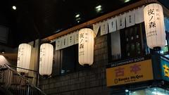 KAWASAKI city (26)