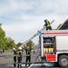 2019-05-19_HFLÜ-Kreisentscheid_Somborn_BT-6151
