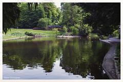 Nantes Parcs et Jardins Mai 2019