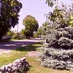 Вид со двора на остановку автобуса и магазин