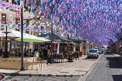 They are all trimmed up at Saint Cyprien - Photo of Marnac