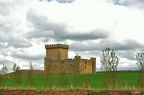 Castillo de Villalonso - Spain