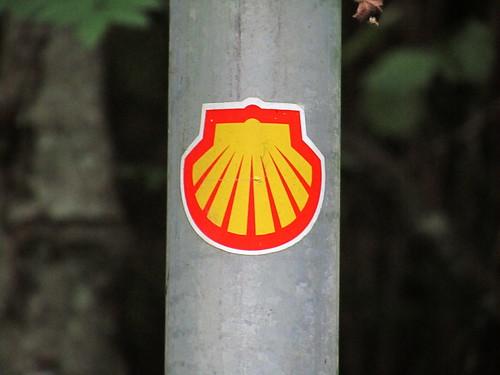 20110914 29 070 Jakobus Muschelsternzeichen Shell