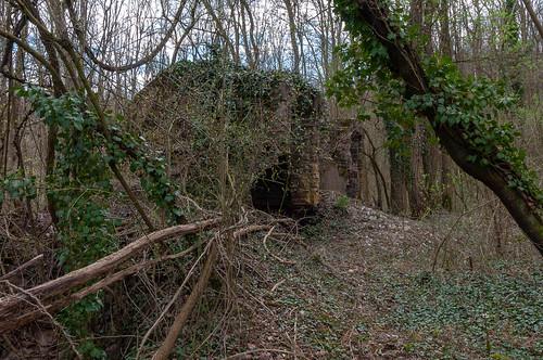 Ancien four à chaux (Soultz-les-Bains, France)-104
