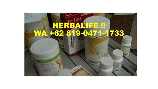 DISCOUNT, WA +62 819-0471-1733, Alamat Herbalife Papua
