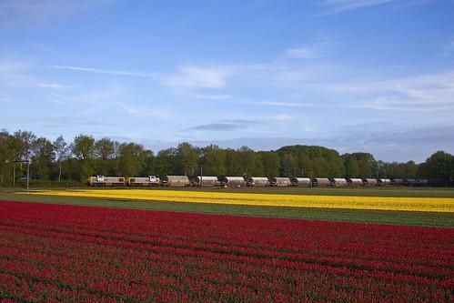 Lineas 7772 + 7779 + dolomiettrein 47628 Veendam - Hermalle  - Beilen