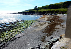 Wembury Beach, Devon (NT)