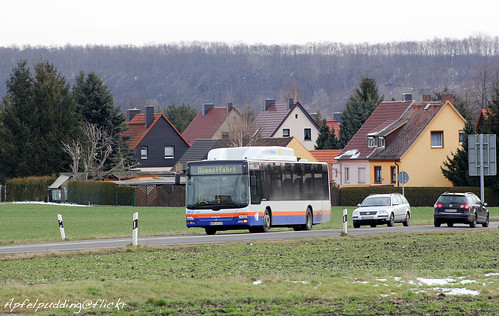 Bunte Buswelt - Hohenmölsen