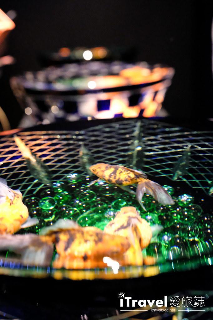 福冈展览推荐 博德金鱼の祭 (56)