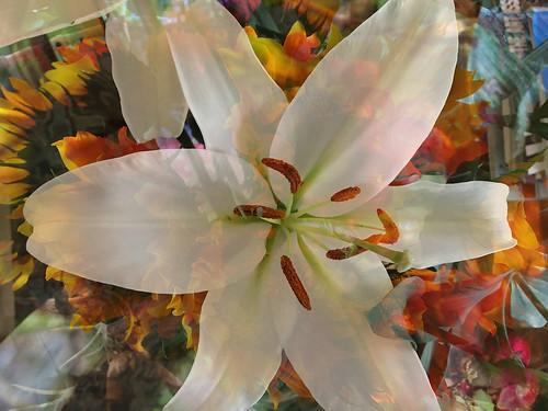 Happy Easter, Rama Navami & Passover