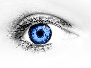 100x.14 - In Blue