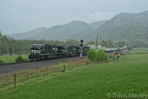 NS 201 at CP Arcadia