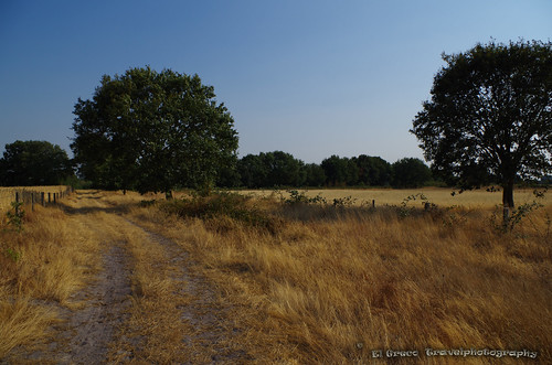 landpath Marksken