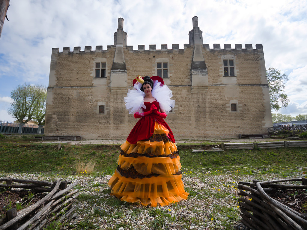 related image - Castle Mania 2019 - Le Pontet - P1566764