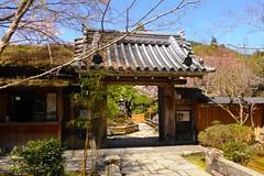 Hosen-in, Sanmon (Gate) -1 (April 2019)
