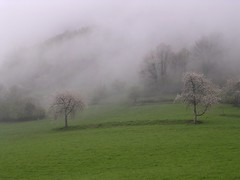 15)04/2K6 Herran dans la brume - Photo of Herran