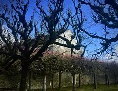 Garden wall, Fleury - Photo of Perthes