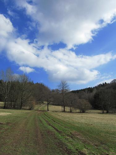 20110327 382 Jakobus Hügel Wald Wiese Wolken