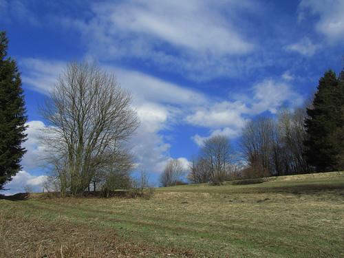 20110327 383 Jakobus Hügel Wald Wiese Wolken