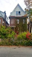 Overgrown House On Exeter Street
