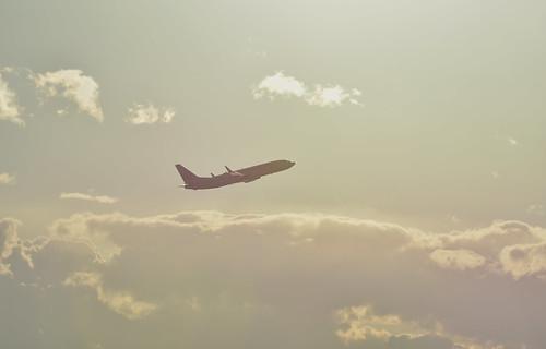 JAL JA319J, Boeing 737-846 at NGO