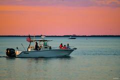 Sleek Lines Soft Colors Of Sunset Boating On Tampa Bay Florida - IMRAN™