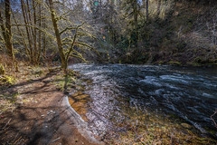 Alder Glen Recreation Site, Nestucca Wild and Scenic River