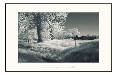 Landscape beauty  -  infrared 02