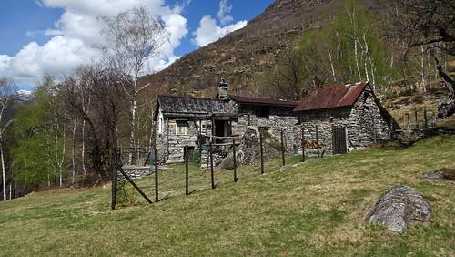 Bergweiler Cropp (709 m.ü.M.) am Südhang des Maggiatales