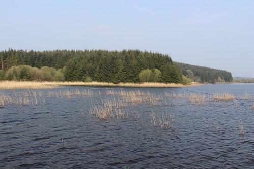 Saint John's Lough