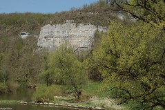 escalade- Falaises de Rurey au bord de la Loue