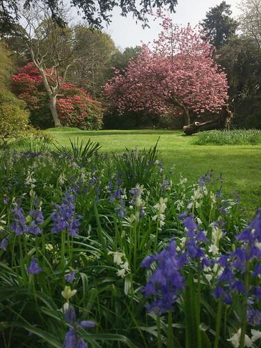 Kilruddery Gardens