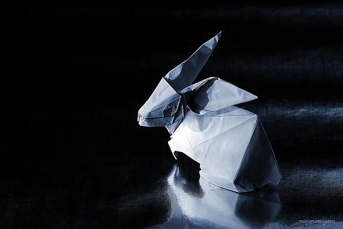 Origami Rabbit (Yoo Tae Yong)