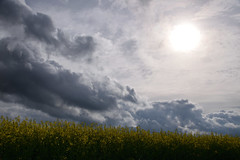 Nuages - Photo of Mertzwiller