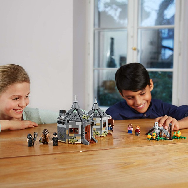 LEGO-Harry-Potter-75947-Hagrids-Hut-Buckbeaks-Rescue-5