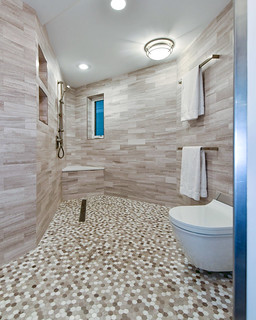 WholeHouseUniversalDesignCotyAwardWinner-wheelchair-accessible-shower