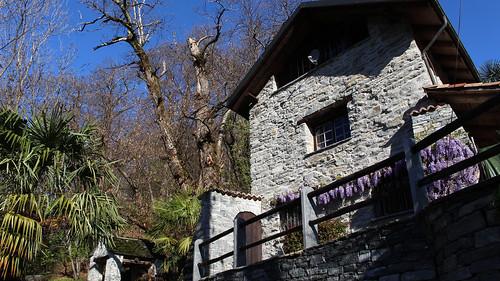 Weiler Niva unterhalb von Loco