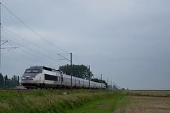 TGV PSE N°39 à Esquelbecq