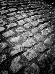 Roubaix Cobbles