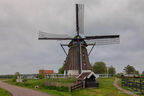De Oude Knegt (rebuilt 2004) HFF