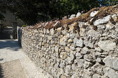 Stone Wall - Photo of Châteauneuf-le-Rouge