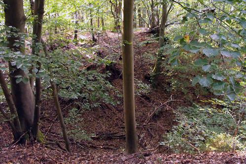 Ruine Steineck