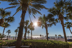 Sunny Clearwater Beach
