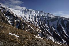 MONTE GORZANO per la cresta ovest e discesa per il vallone di Selvagrande (Monti della Laga)